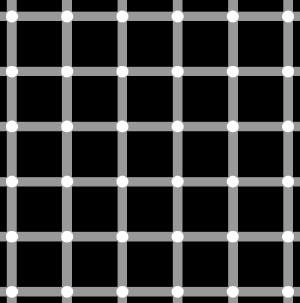 Optische Illusion: man sieht kleine schwarze Punkte, die gar nicht auf dem Bild zu sehen sind